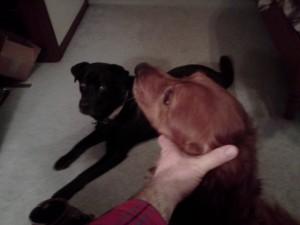 Annie and Goobie